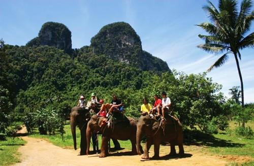 trek à dos d'elephant thailande