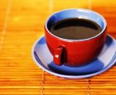 Le kopi luwak, le café qui provient d'excréments